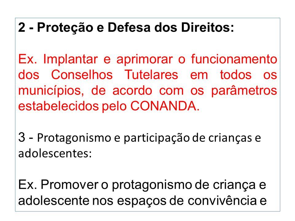 2 - Proteção e Defesa dos Direitos: