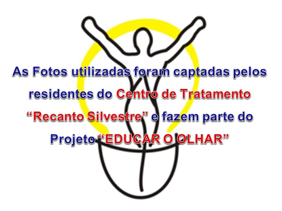 As Fotos utilizadas foram captadas pelos residentes do Centro de Tratamento Recanto Silvestre e fazem parte do Projeto EDUCAR O OLHAR
