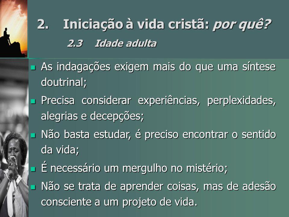2. Iniciação à vida cristã: por quê 2.3 Idade adulta