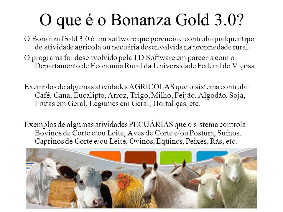 O que é o Bonanza Gold 3.0