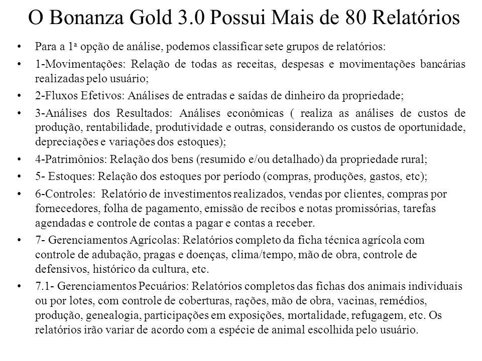 O Bonanza Gold 3.0 Possui Mais de 80 Relatórios