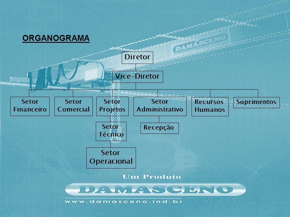 ORGANOGRAMA Diretor Vice-Diretor Operacional Setor Financeiro
