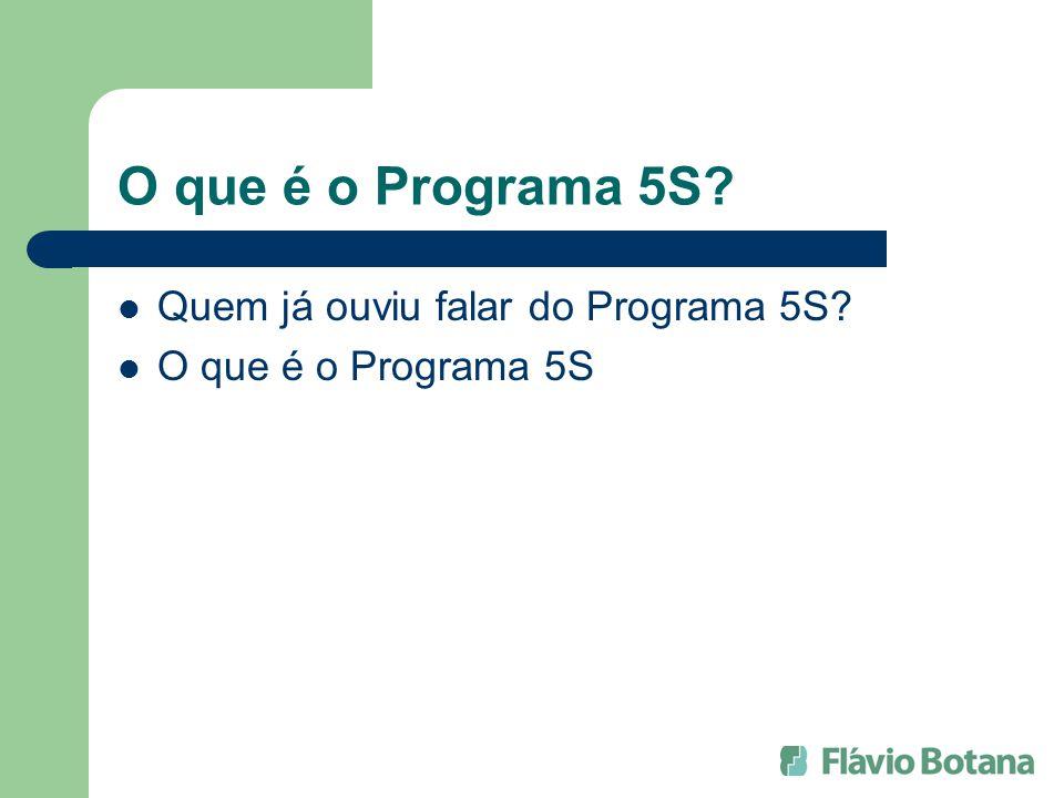 O que é o Programa 5S Quem já ouviu falar do Programa 5S