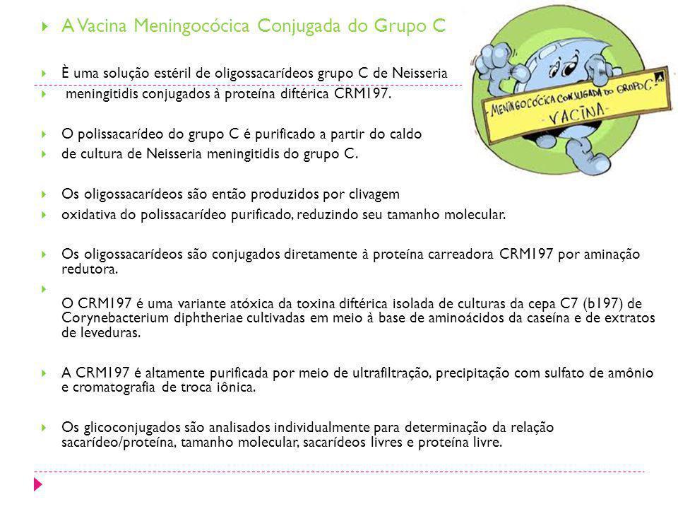 A Vacina Meningocócica Conjugada do Grupo C