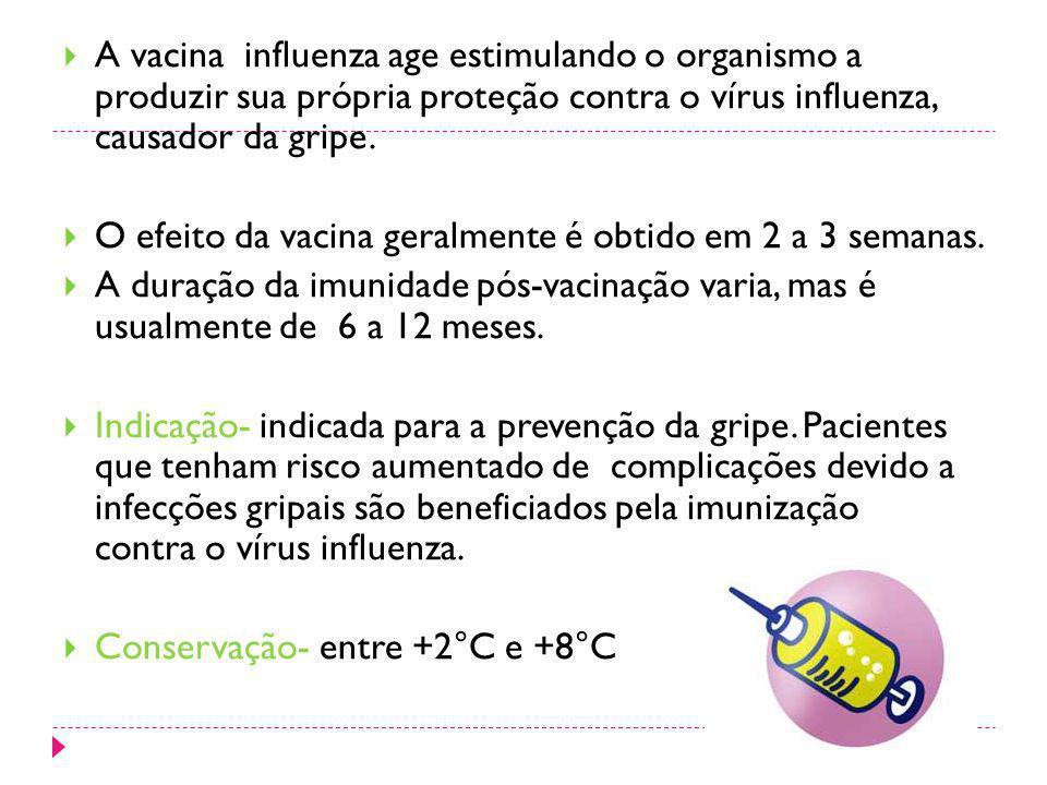 A vacina influenza age estimulando o organismo a produzir sua própria proteção contra o vírus influenza, causador da gripe.
