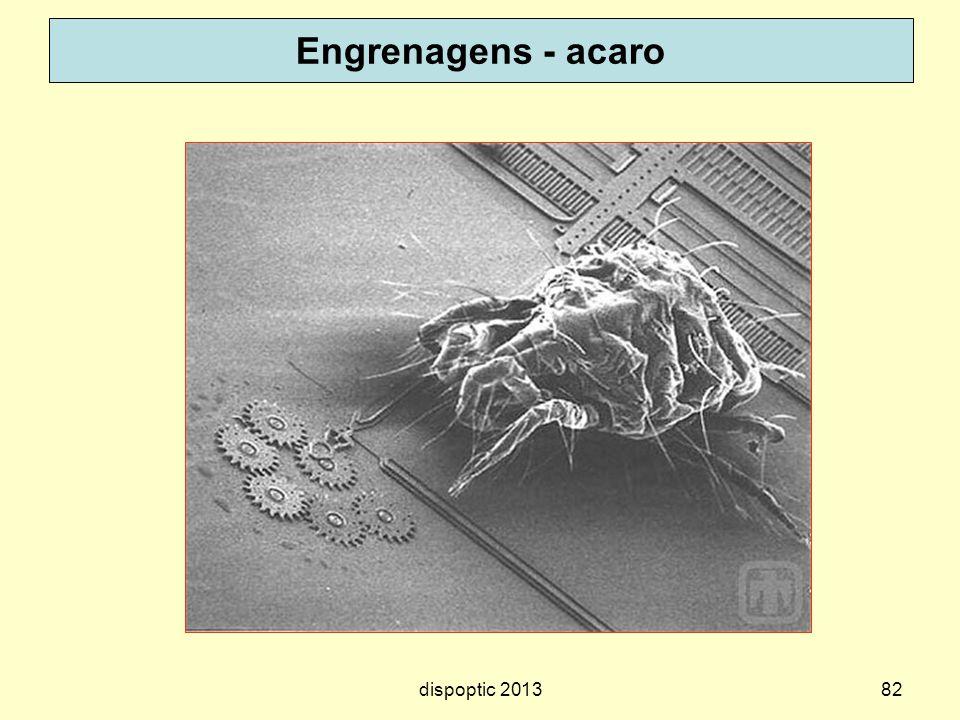 Engrenagens - acaro dispoptic 2013