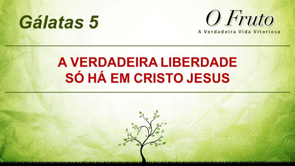 A VERDADEIRA LIBERDADE SÓ HÁ EM CRISTO JESUS