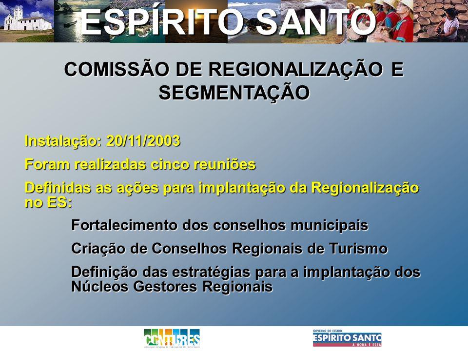 COMISSÃO DE REGIONALIZAÇÃO E SEGMENTAÇÃO