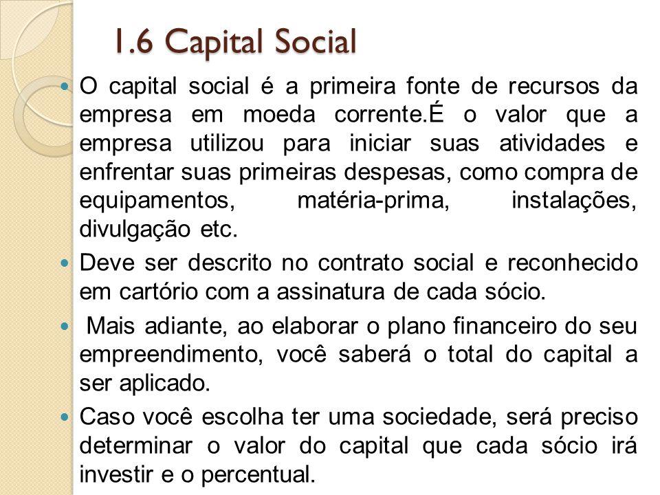 1.6 Capital Social