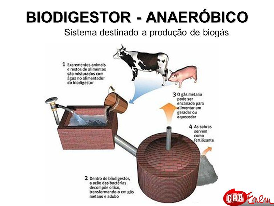BIODIGESTOR - ANAERÓBICO