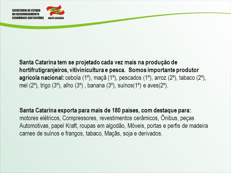 Santa Catarina tem se projetado cada vez mais na produção de