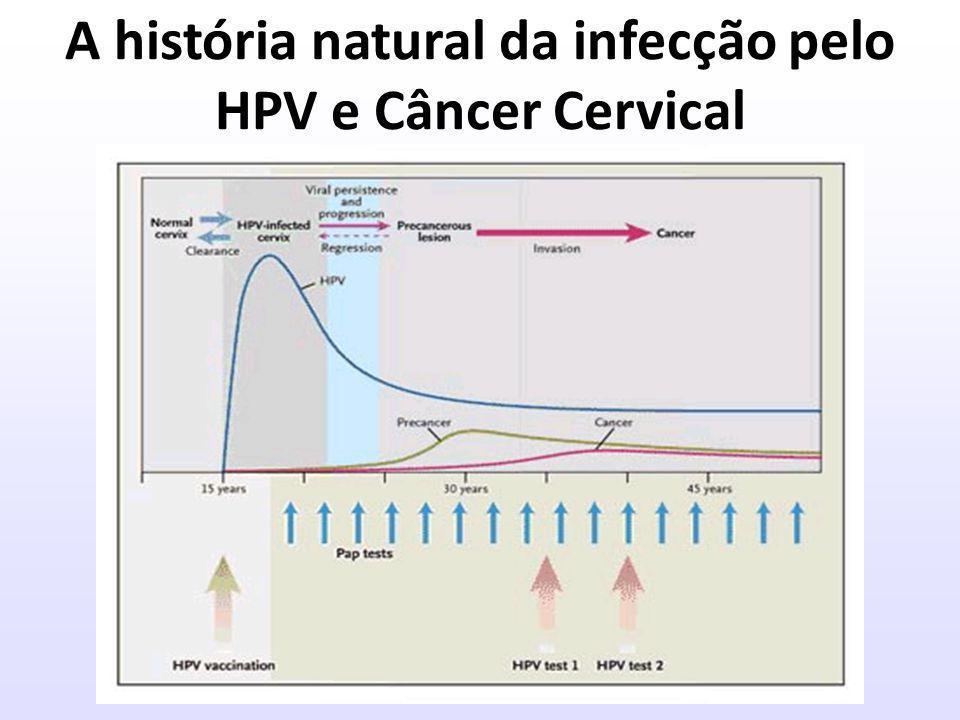 A história natural da infecção pelo HPV e Câncer Cervical