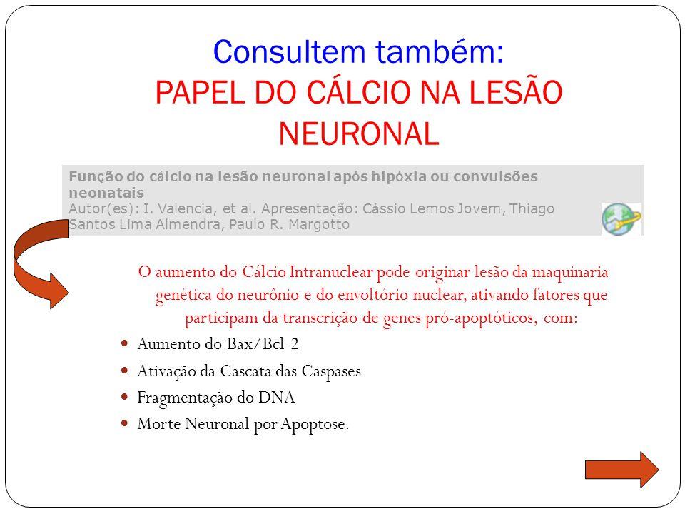 Consultem também: PAPEL DO CÁLCIO NA LESÃO NEURONAL
