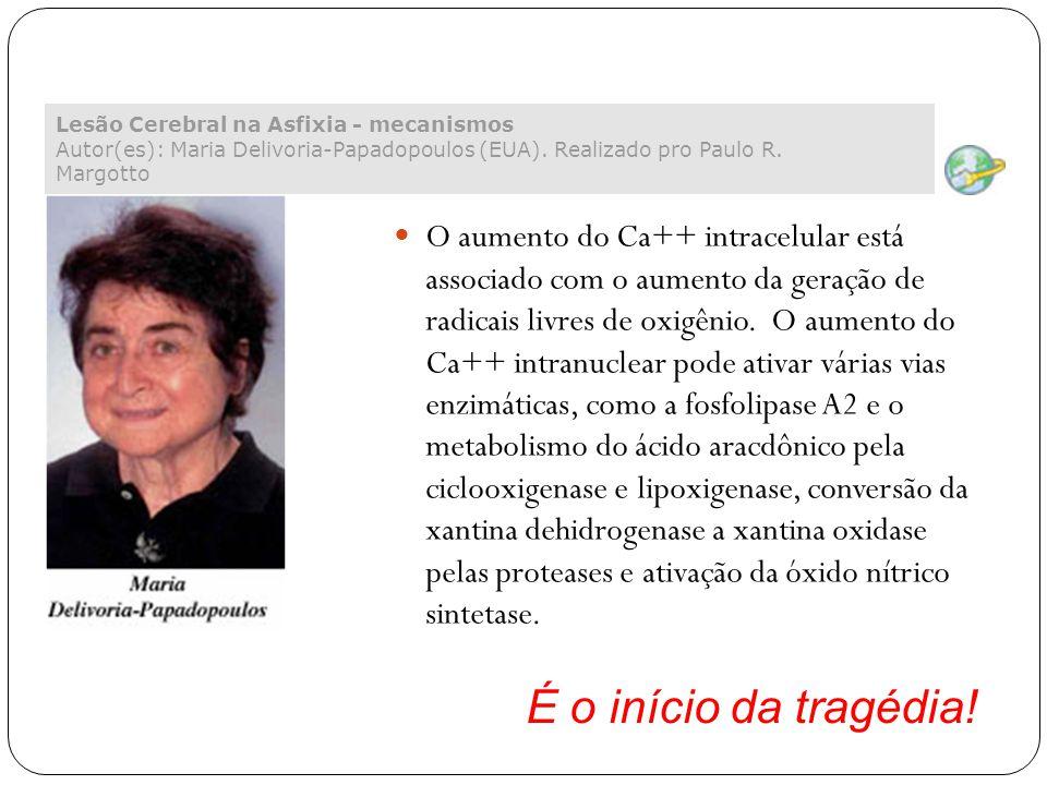 Lesão Cerebral na Asfixia - mecanismos Autor(es): Maria Delivoria-Papadopoulos (EUA). Realizado pro Paulo R. Margotto