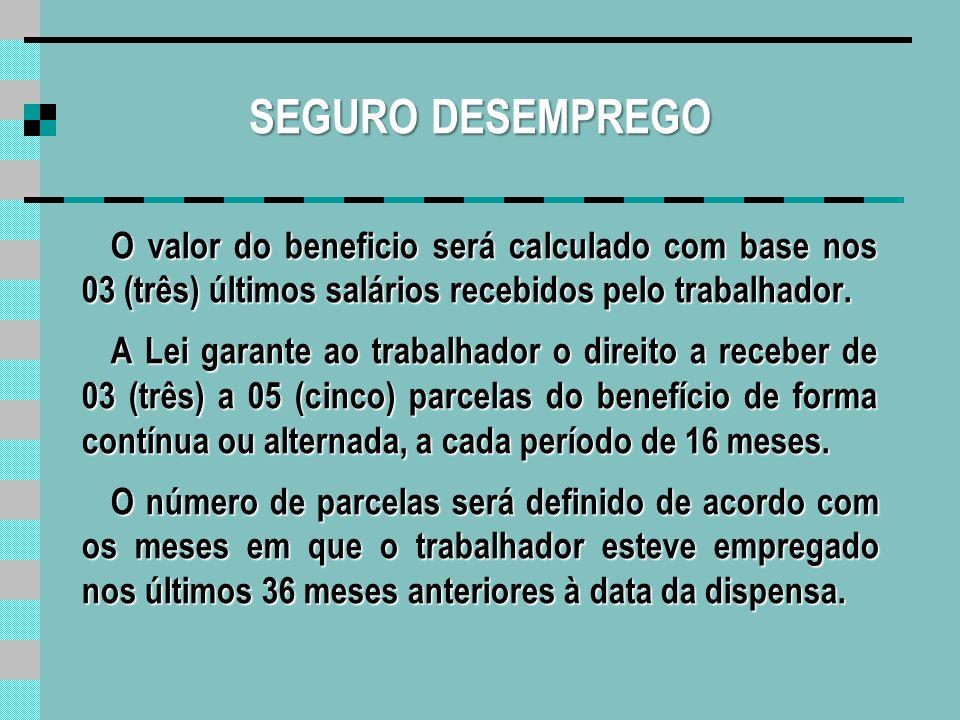SEGURO DESEMPREGO