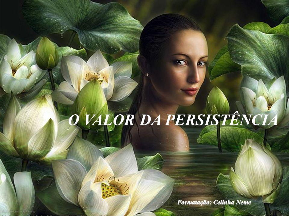 O VALOR DA PERSISTÊNCIA