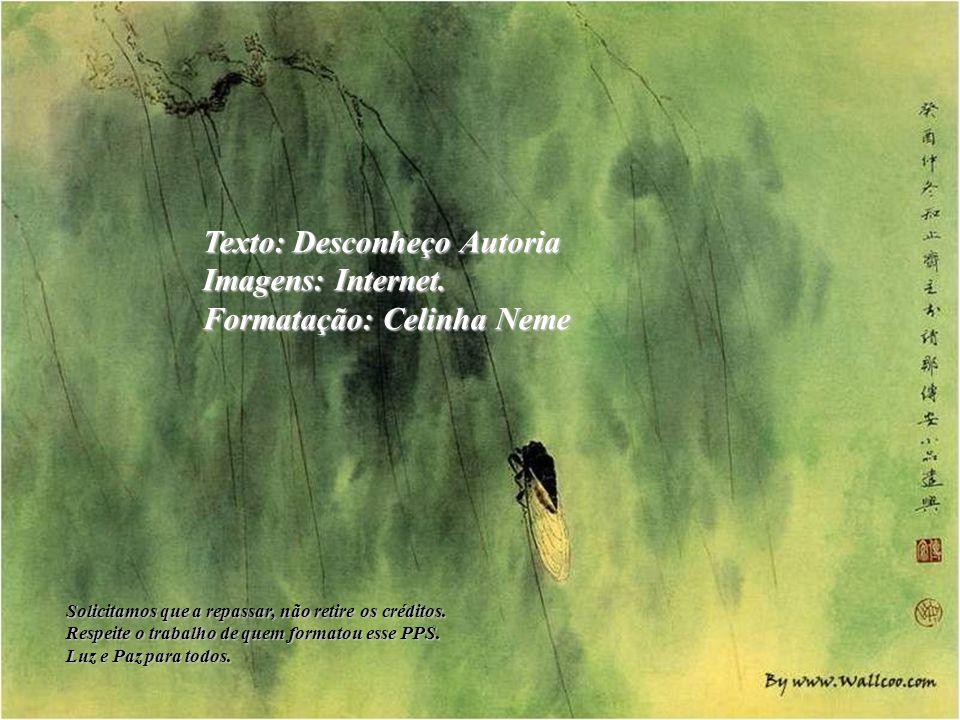 Texto: Desconheço Autoria Imagens: Internet. Formatação: Celinha Neme