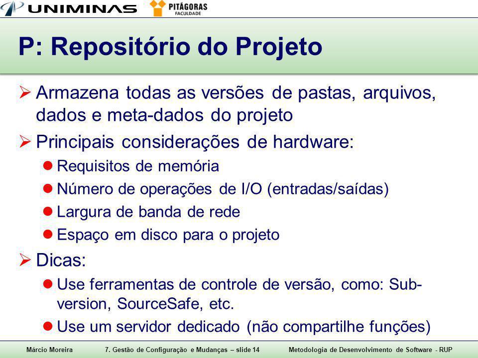 P: Repositório do Projeto