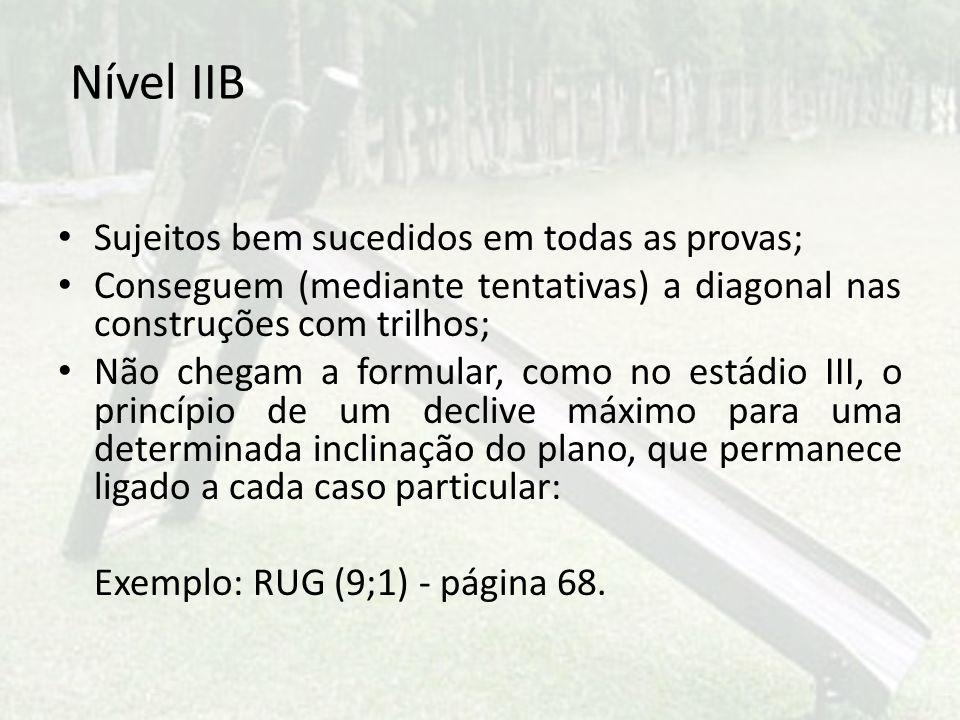 Nível IIB Sujeitos bem sucedidos em todas as provas;
