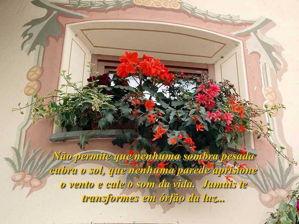 Não permite que nenhuma sombra pesada cubra o sol, que nenhuma parede aprisione o vento e cale o som da vida.