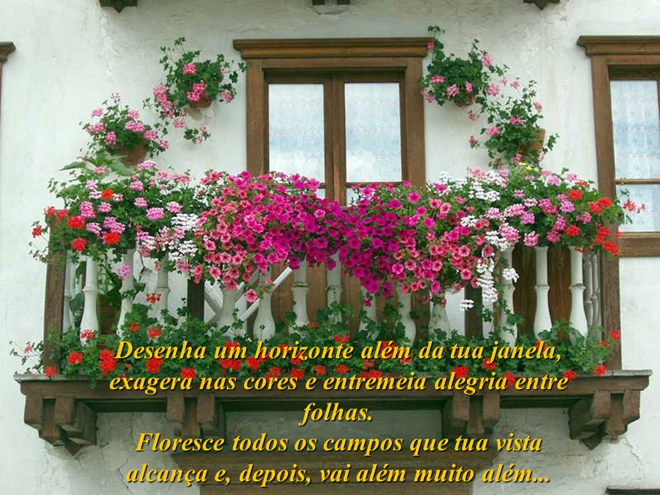 Desenha um horizonte além da tua janela, exagera nas cores e entremeia alegria entre folhas.