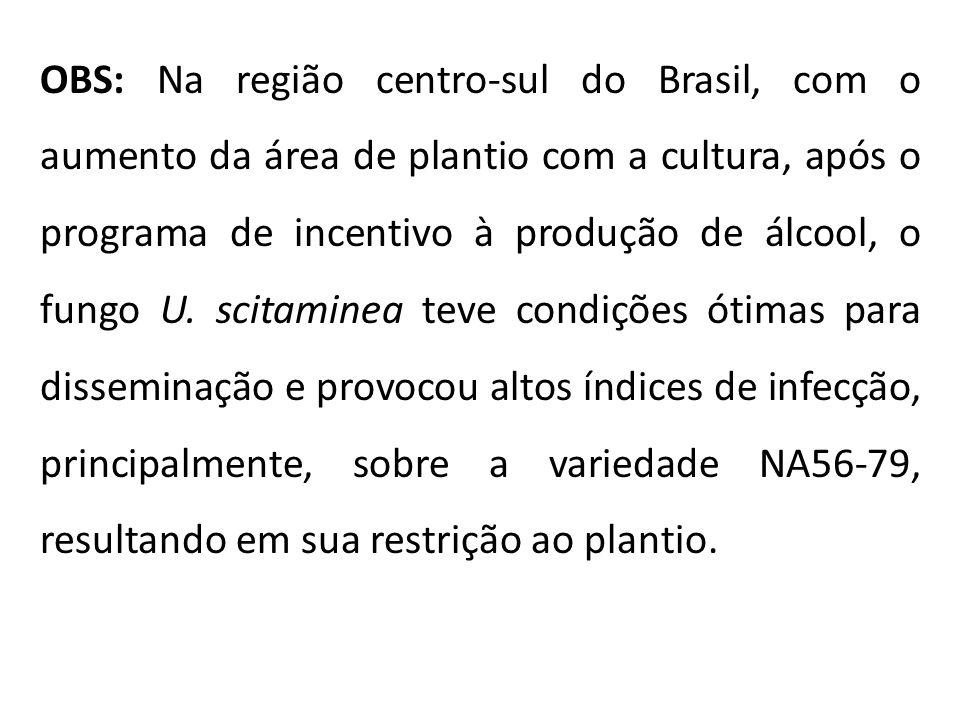 OBS: Na região centro-sul do Brasil, com o aumento da área de plantio com a cultura, após o programa de incentivo à produção de álcool, o fungo U.