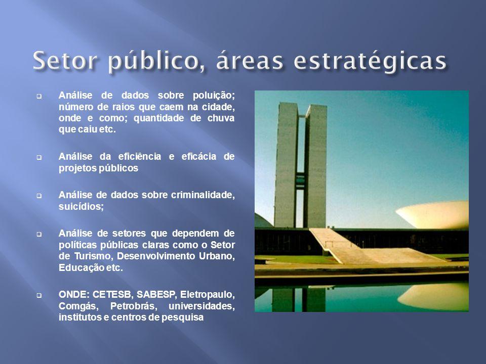 Setor público, áreas estratégicas