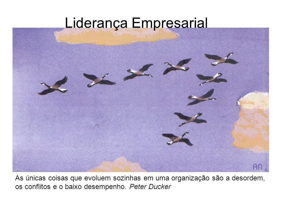 Liderança Empresarial