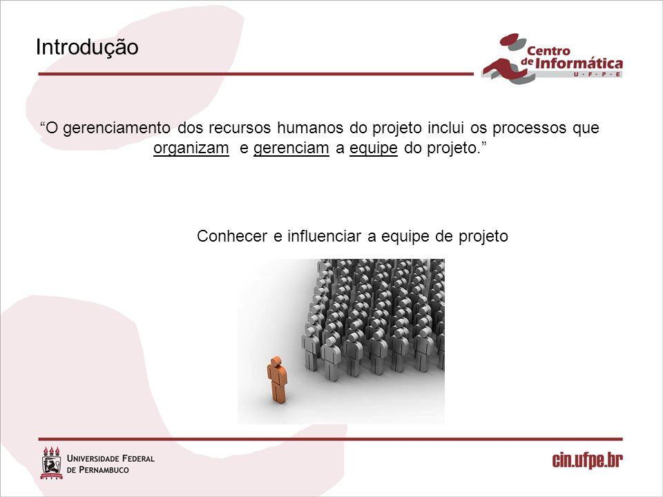 Conhecer e influenciar a equipe de projeto