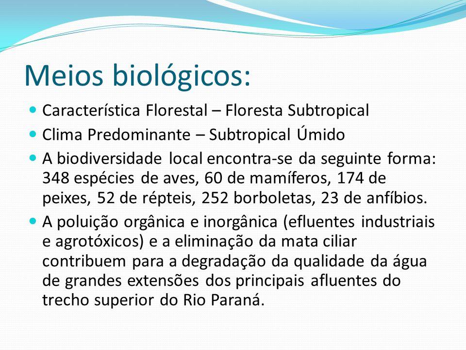 Meios biológicos: Característica Florestal – Floresta Subtropical