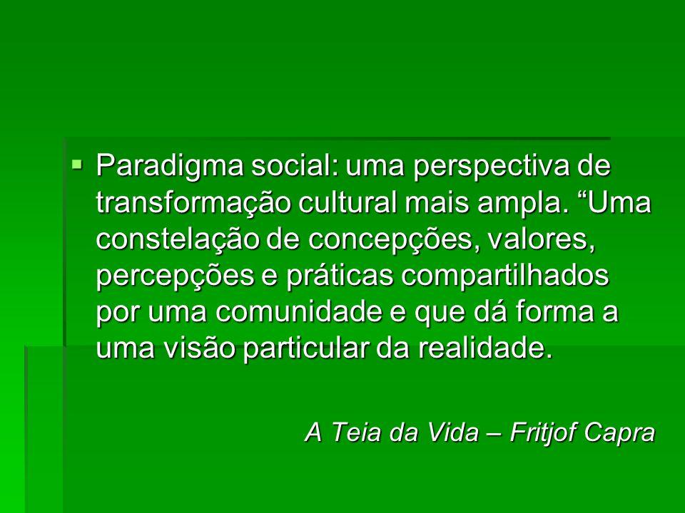 Paradigma social: uma perspectiva de transformação cultural mais ampla