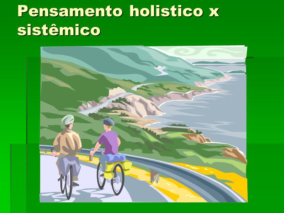 Pensamento holistico x sistêmico