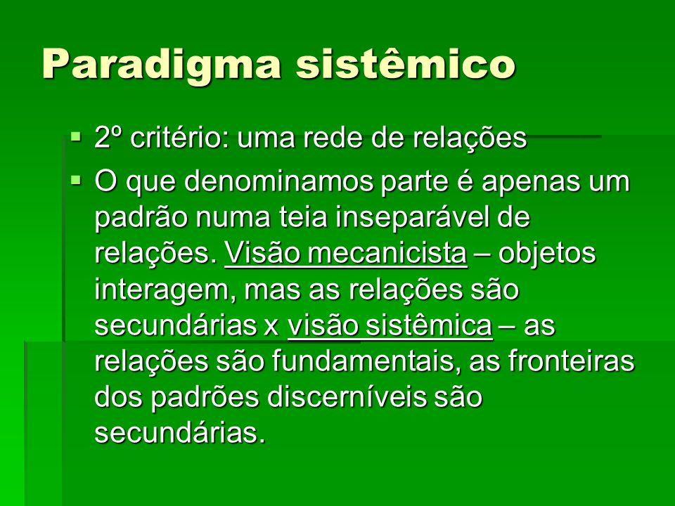 Paradigma sistêmico 2º critério: uma rede de relações