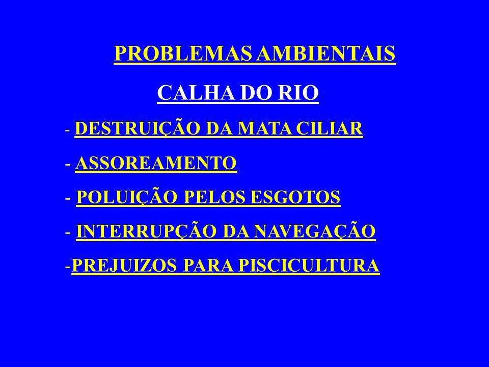 PROBLEMAS AMBIENTAIS CALHA DO RIO ASSOREAMENTO POLUIÇÃO PELOS ESGOTOS