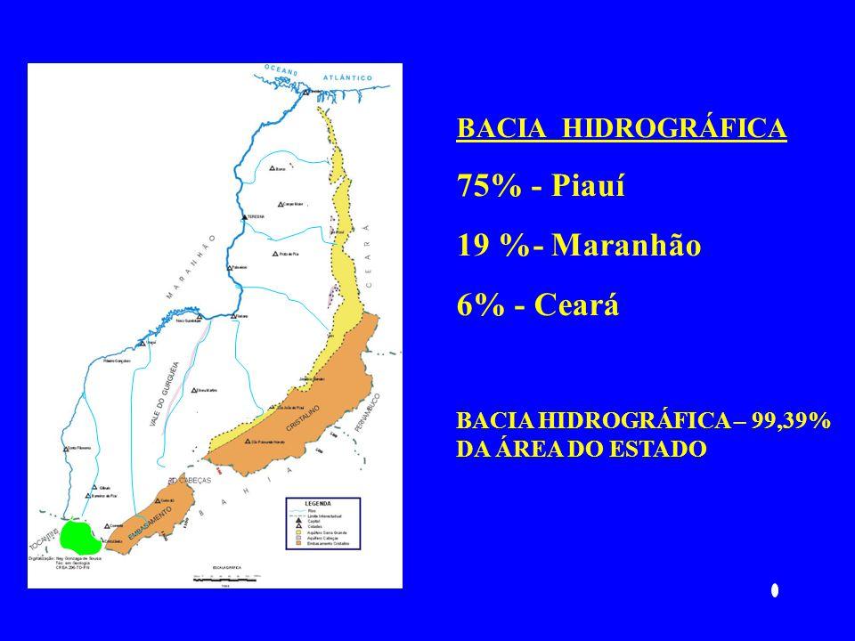 75% - Piauí 19 %- Maranhão 6% - Ceará BACIA HIDROGRÁFICA