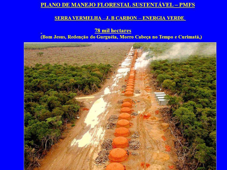 PLANO DE MANEJO FLORESTAL SUSTENTÁVEL – PMFS