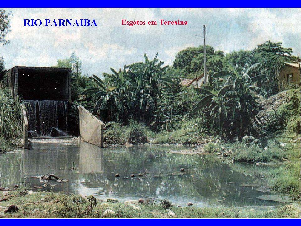 RIO PARNAIBA RIO PARNAIBA RIO PARNAIBA