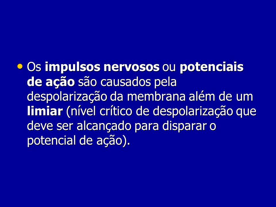 Os impulsos nervosos ou potenciais de ação são causados pela despolarização da membrana além de um limiar (nível crítico de despolarização que deve ser alcançado para disparar o potencial de ação).