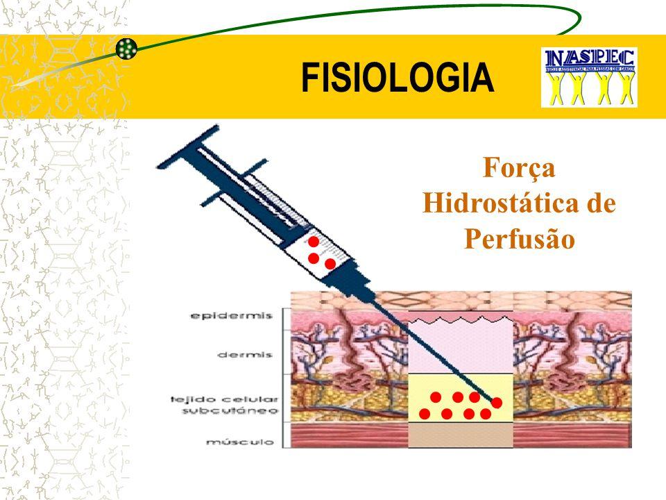 Força Hidrostática de Perfusão
