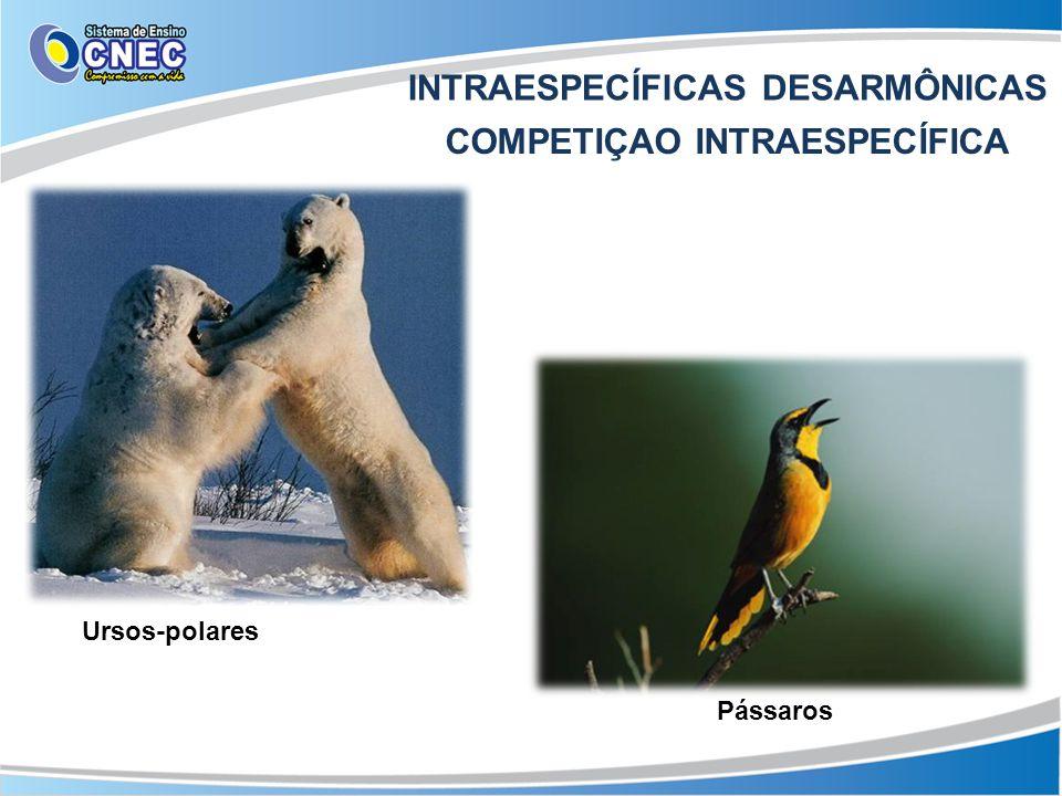 INTRAESPECÍFICAS DESARMÔNICAS COMPETIÇAO INTRAESPECÍFICA