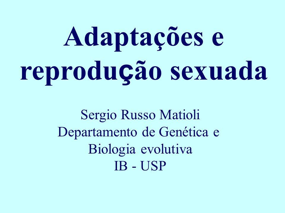 Adaptações e reprodução sexuada