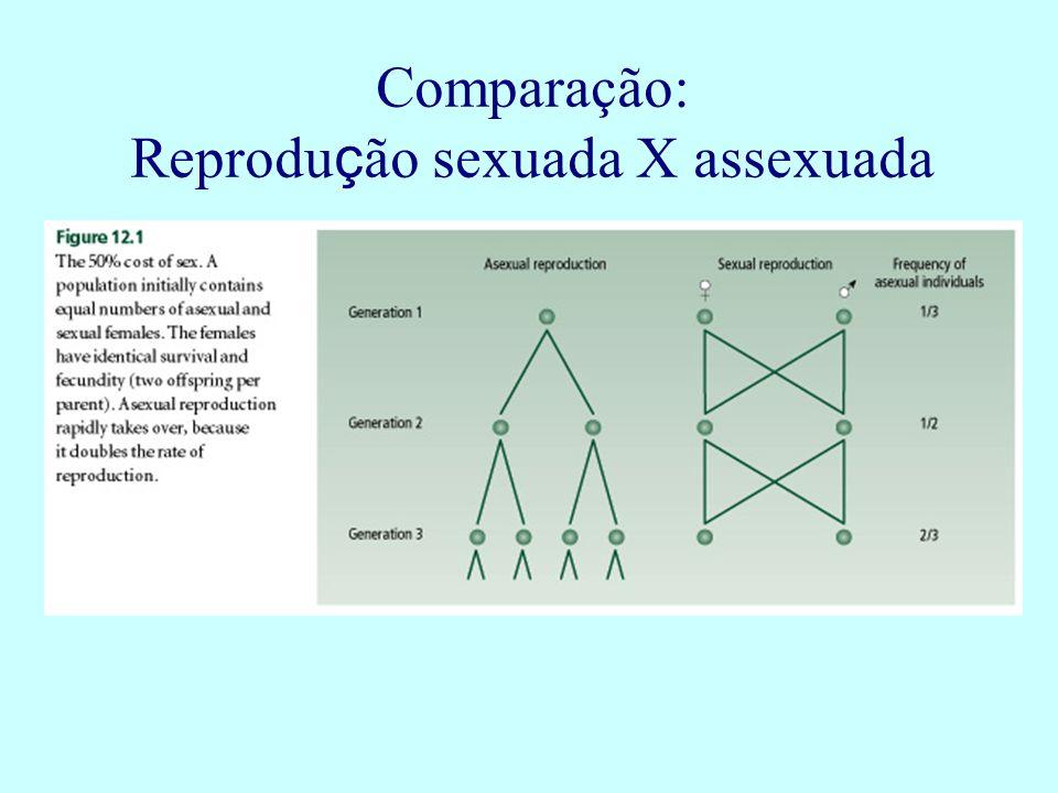 Reprodução sexuada X assexuada