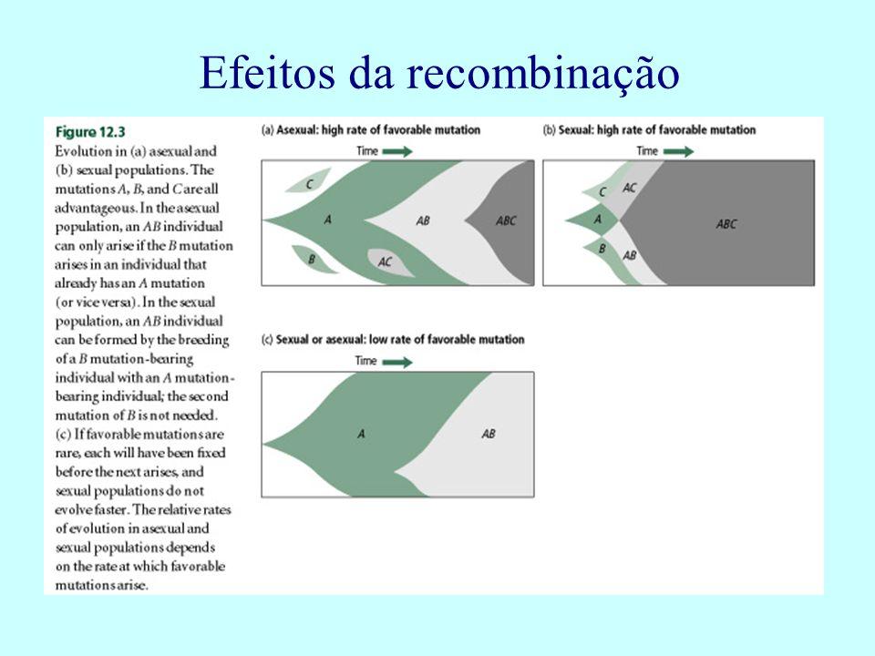 Efeitos da recombinação