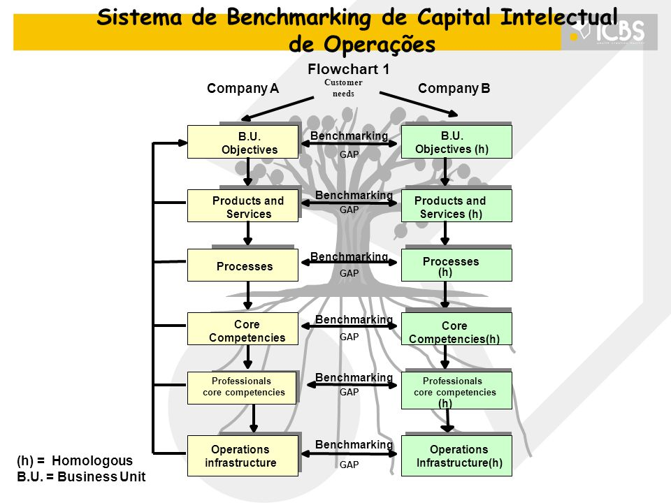 Sistema de Benchmarking de Capital Intelectual