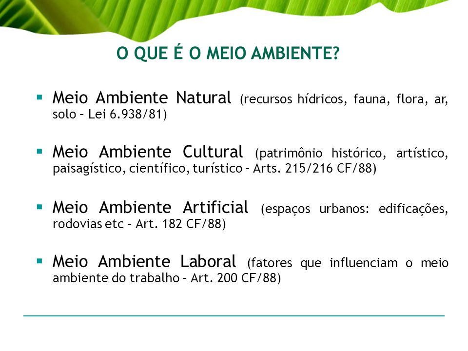 O QUE É O MEIO AMBIENTE Meio Ambiente Natural (recursos hídricos, fauna, flora, ar, solo – Lei 6.938/81)