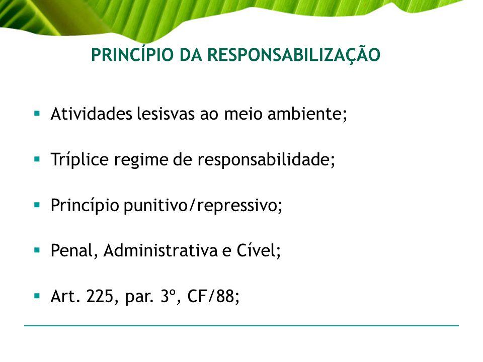 PRINCÍPIO DA RESPONSABILIZAÇÃO