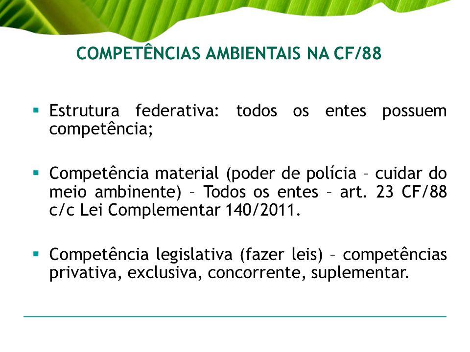 COMPETÊNCIAS AMBIENTAIS NA CF/88
