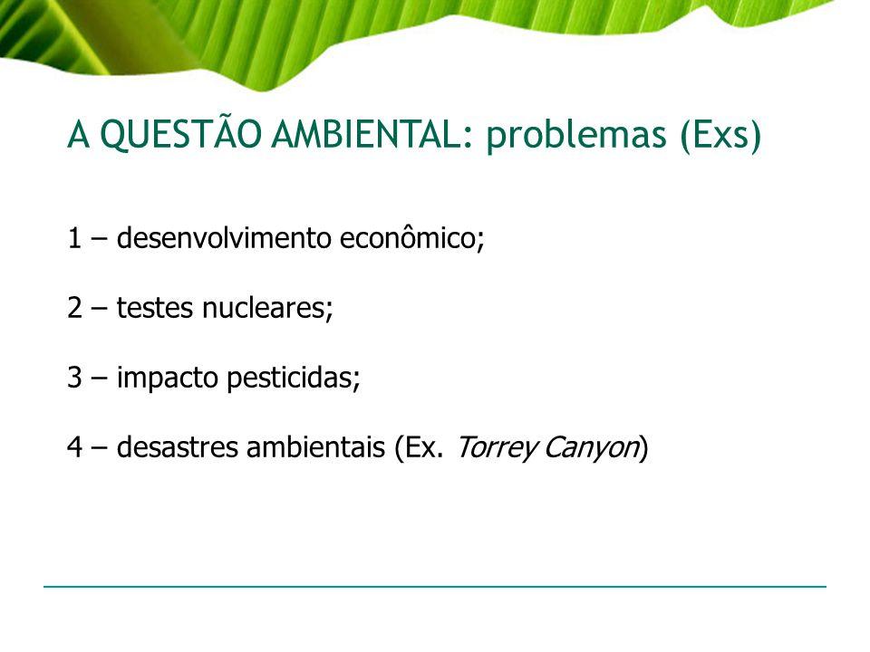 A QUESTÃO AMBIENTAL: problemas (Exs)