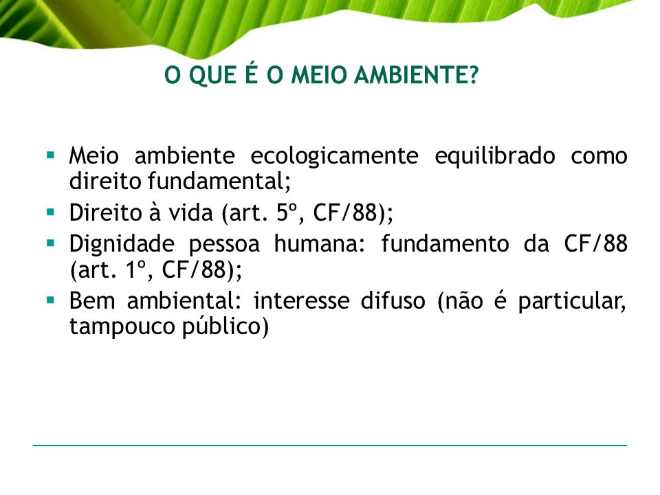 O QUE É O MEIO AMBIENTE Meio ambiente ecologicamente equilibrado como direito fundamental; Direito à vida (art. 5º, CF/88);