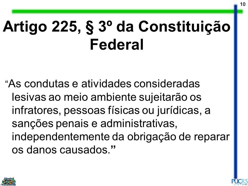Artigo 225, § 3º da Constituição Federal